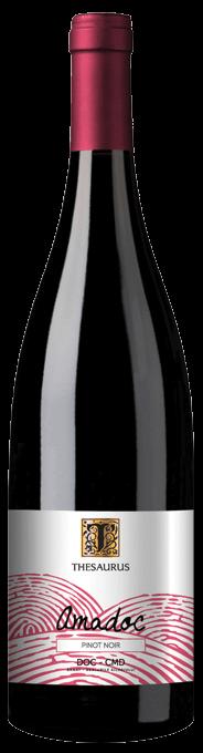 Vin Amadoc Pinot Noir Thesaurus