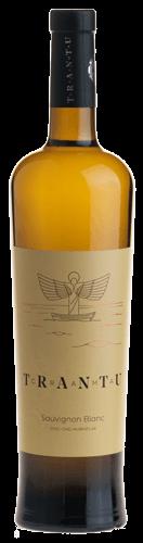 Vin Trantu Sauvignon Blanc Trantu