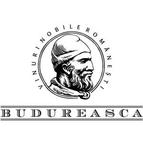 logo budureasca
